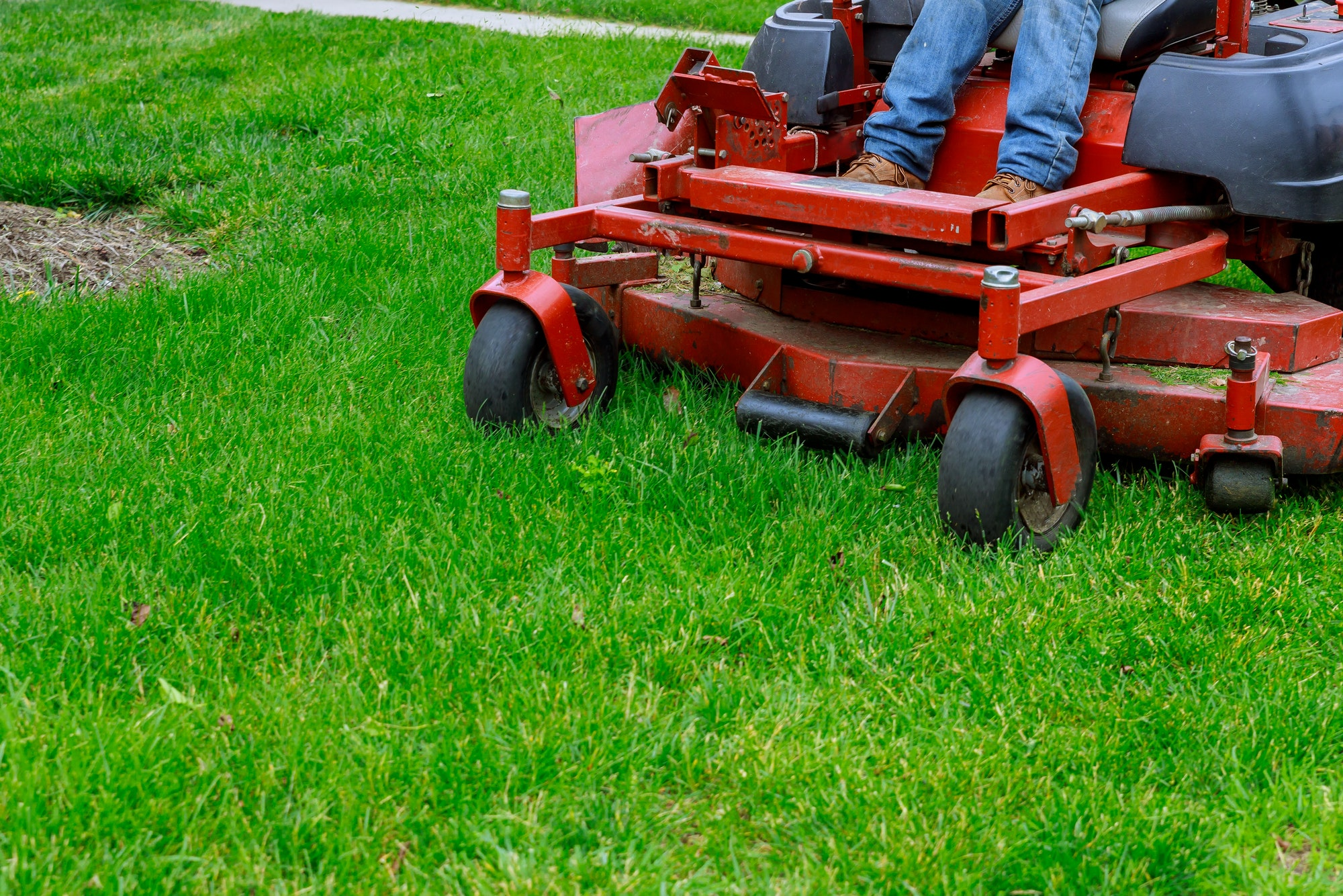 Landscaping Professional gardener with Large of mower cutting the grass